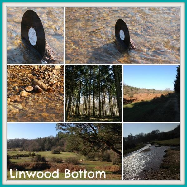 Linwood Bottom