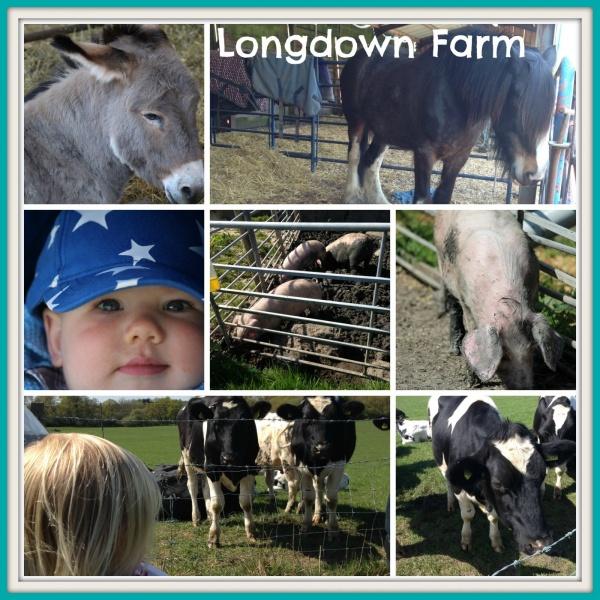 Longdown Farm