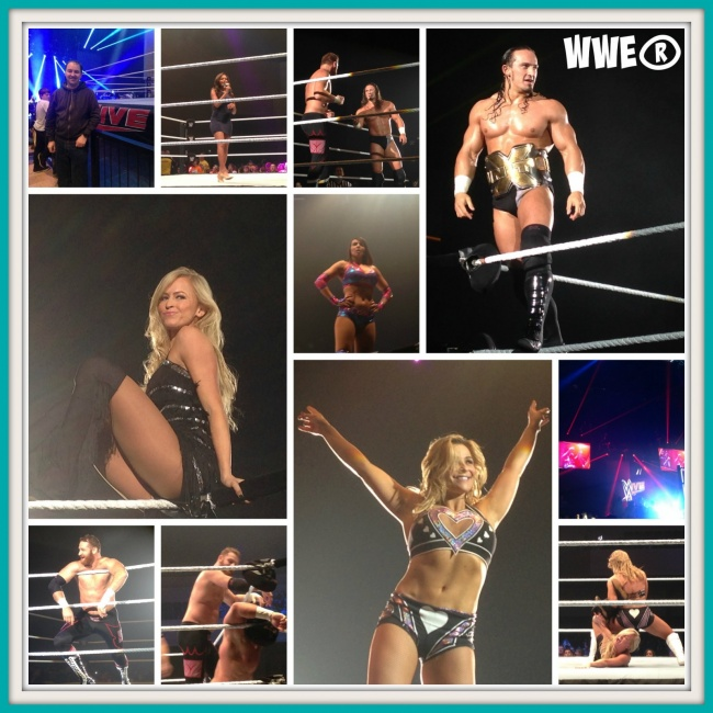 WWE Bournemouth