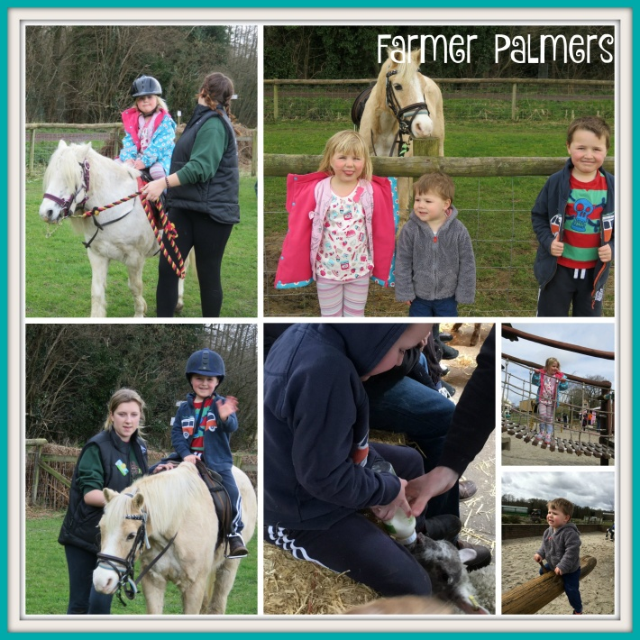 Farmer Palmers