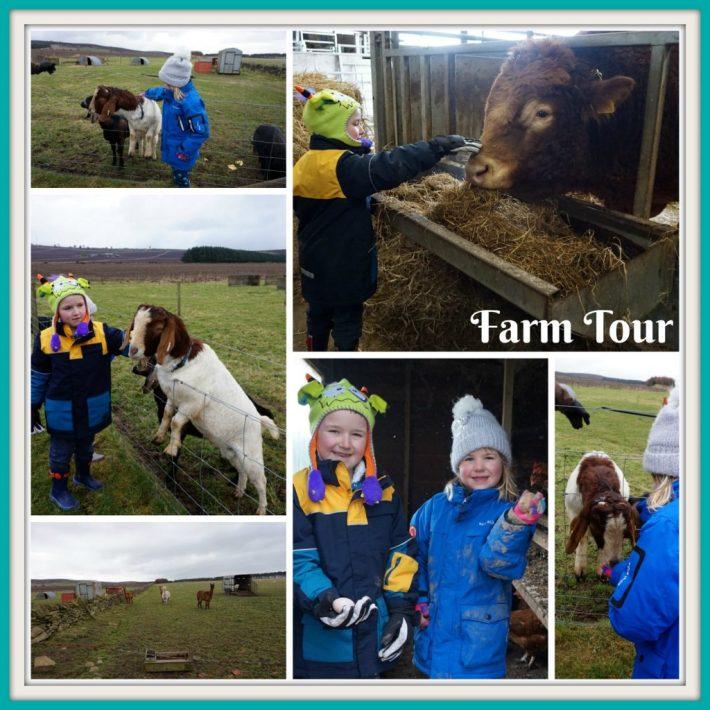 Farm Tour - Newton Farm