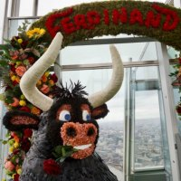 Ferdinand at the Shard