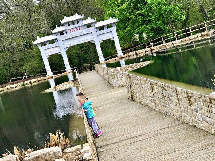 Robin Hill Lakes