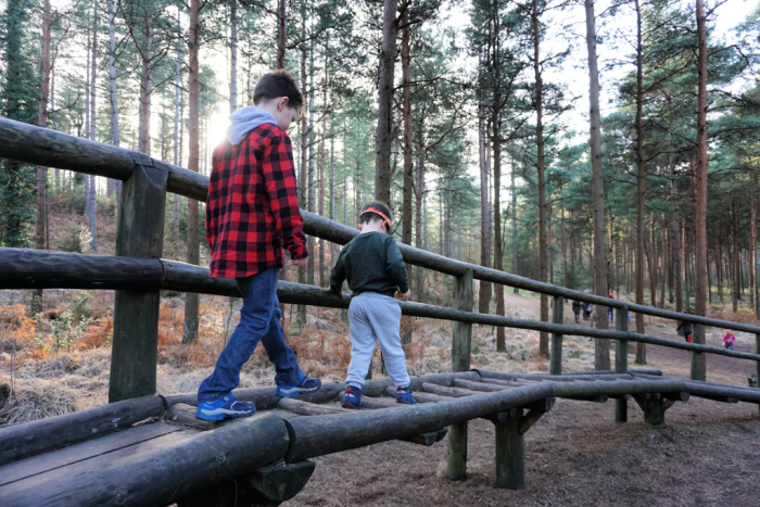 Play Trail Moors Valley (1)