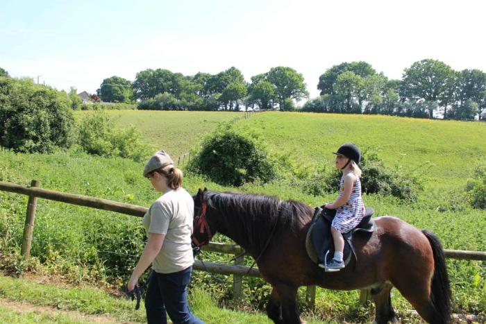 Eliza Horse