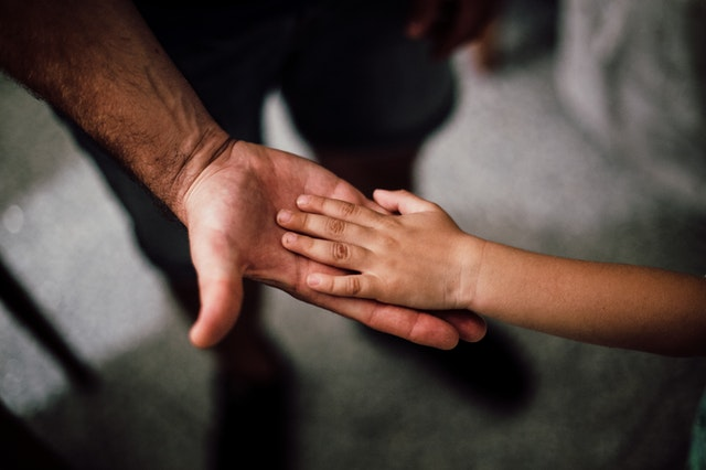 selective-focus-photography-of-child-hand-