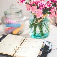 organizer-