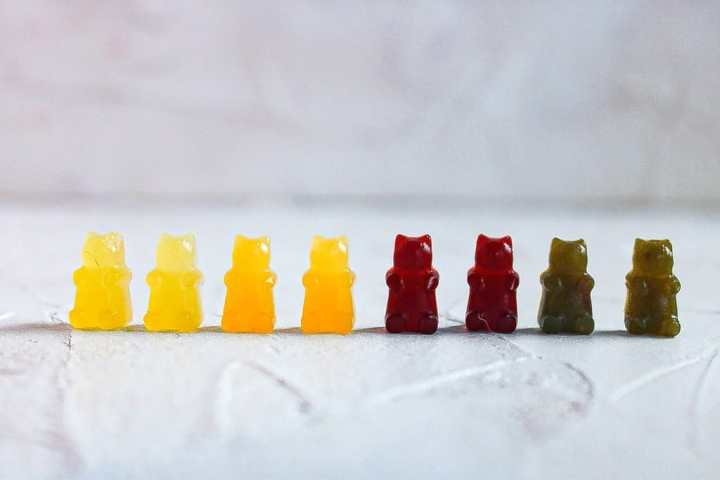 Vegan Gummy Bear (8) lined up with colors yellow orange red and green