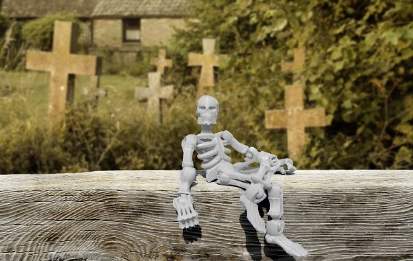 plastic skeleton posed on a log in front of cemetery