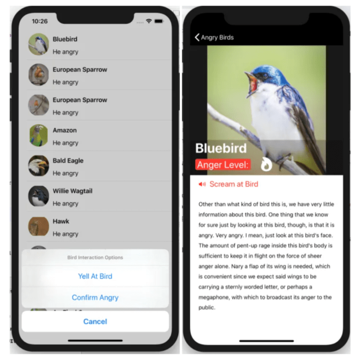 an iOS app listing birds that look angry