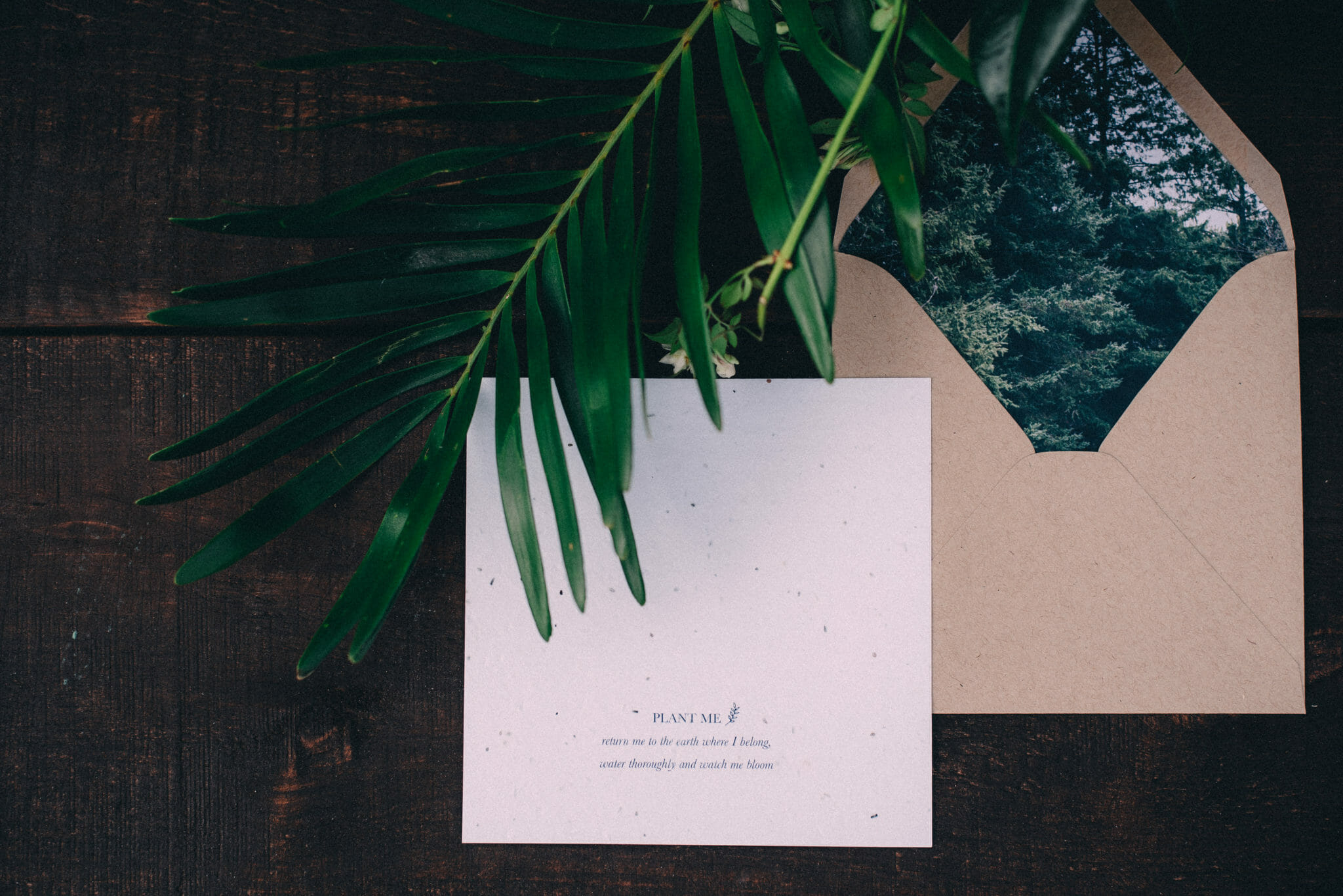Plant infused wedding stationary