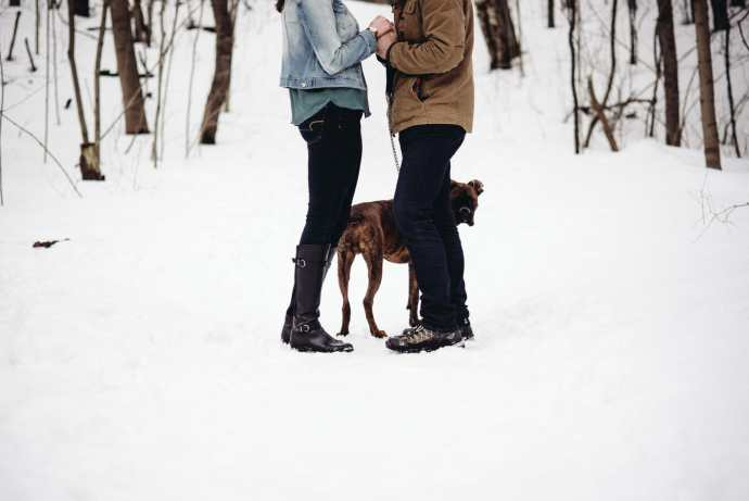 photo of dog at forest couple shoot bowmanville