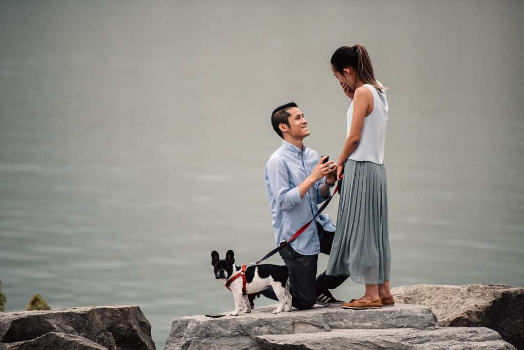 scarborough bluffs proposal photography