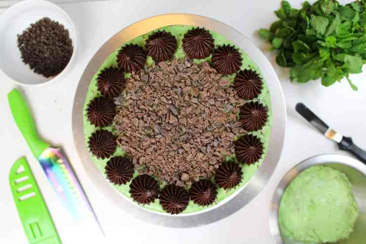 overhead of mint chocolate chip cake