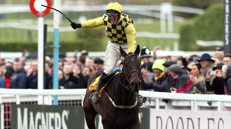Al Boum Photo winning the 2019 Gold Cup at Cheltenham Festival.