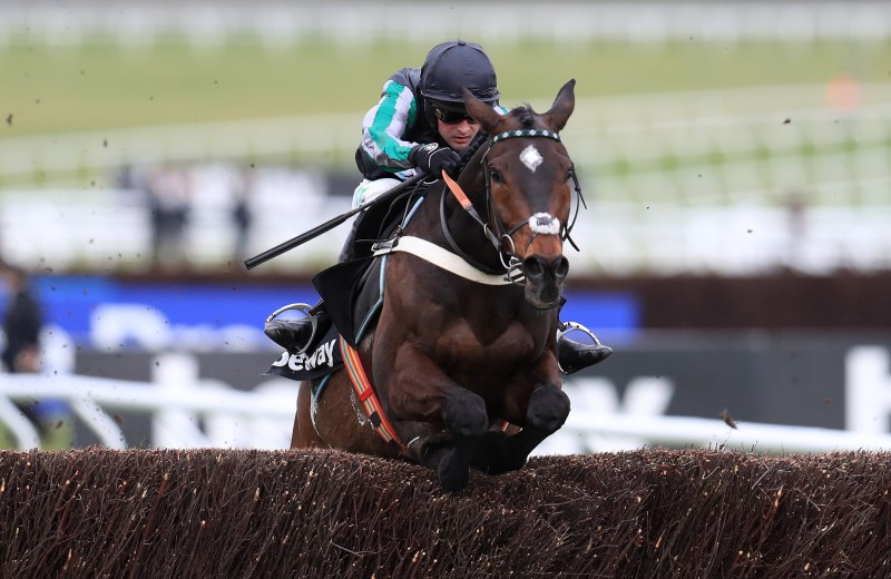 Altior is defending his Queen Mother Champion Chase crown at Cheltenham this year..