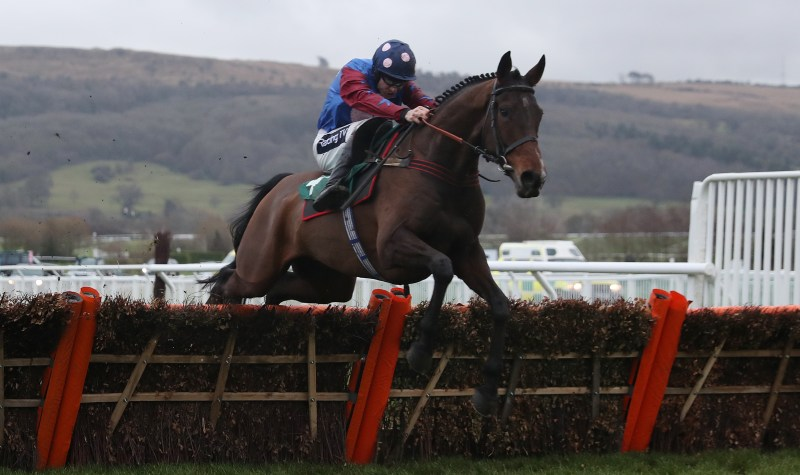 Paisley Park is racing in the Stayers Hurdle but it's Paul Jacobs Cheltenham Day 3 tips for the race