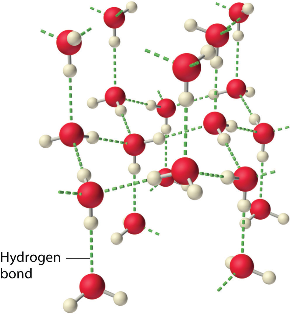 hight resolution of figure 11 5 2 hydrogen bonding and the crystal structure of ice left which floats on liquid water rights wikicommons image credit