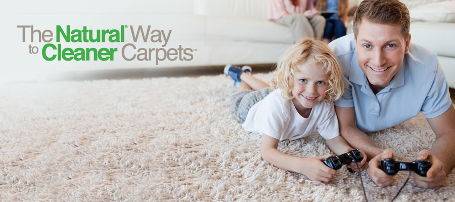 Western Cape Professional Carpet and Upholstery Cleaners