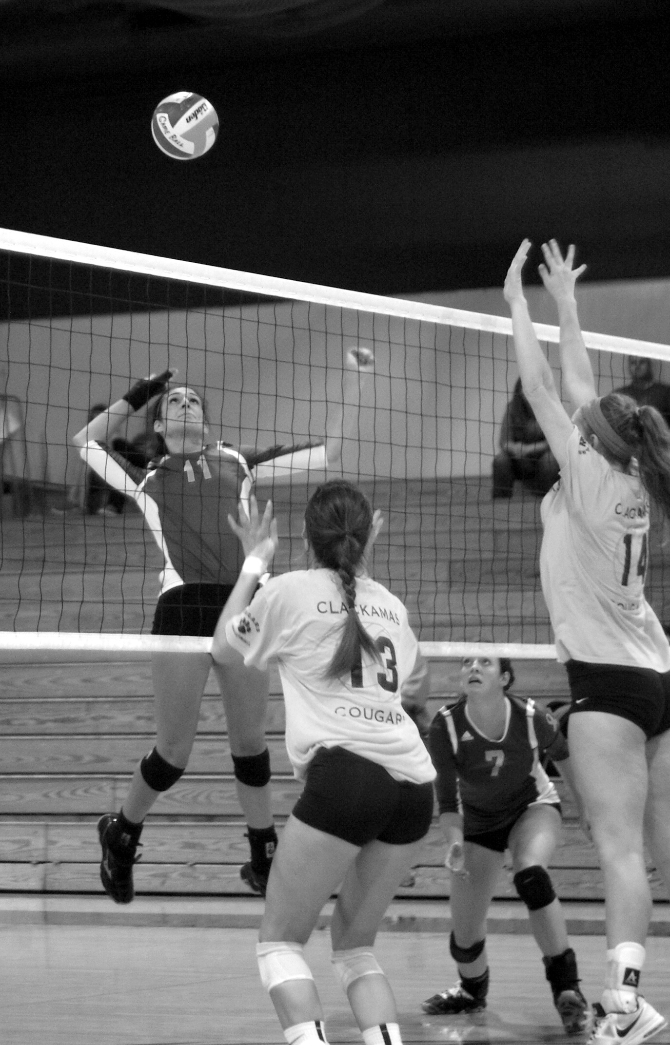 Storm Volleyball struggles to gain momentum - The Courier