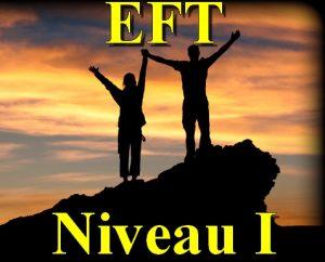 Séminaire d'Introduction à l'EFT 1
