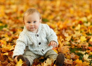 L'influence méconnue de l'environnement sur la santé du bébé 17