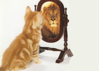 Nous sommes les miroirs les uns des autres 12
