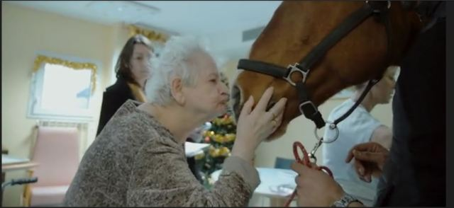 Peyo, cheval de coeur 1