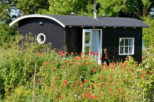 Tiny house habitat alternatif et écologique