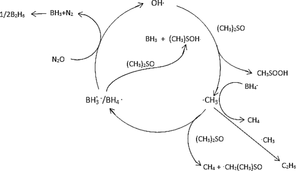 BH4–‐Promoted, Radical‐Initiated, Catalytic Oxidation of