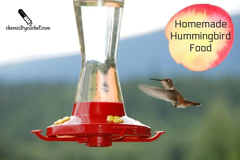 Easy homemade hummingbird food recipe plus important tips chemistry cachets homemade hummingbird food recipe on chemistrycachet forumfinder Image collections