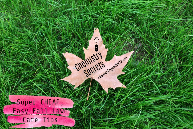 Chemistry Secrets Super Cheap Easy Fall Lawn Care Tips