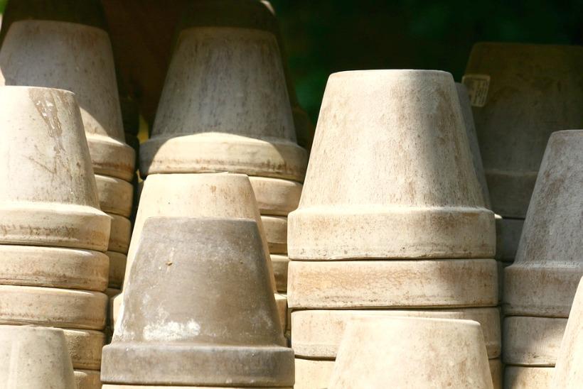 benefits of vinegar in the garden