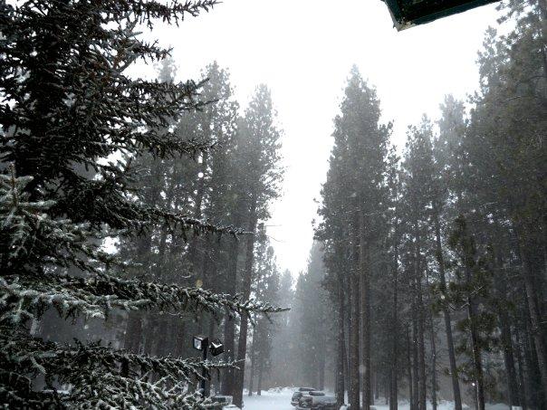Big bear Lake Dreamy Christmas Scenes