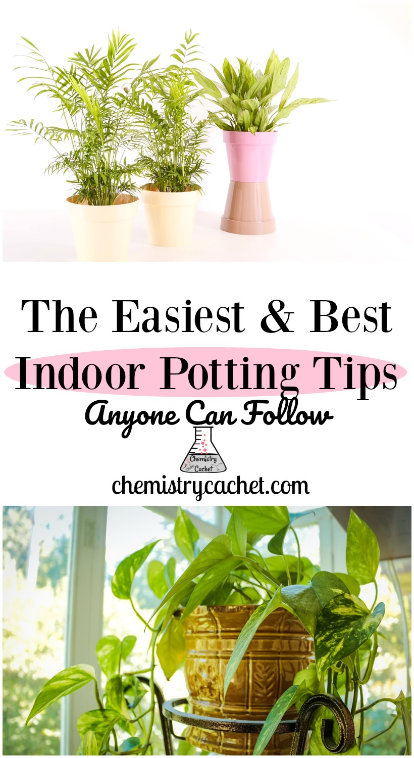 The Easiest & Best Indoor Potting Tips Anyone Can Follow! How to pot, plus easy tips for keeping plants alive on chemistrycachet.com #indoorpotting #houseplants