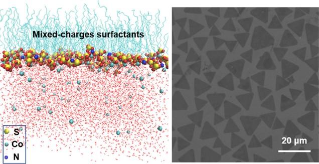 Nanosheets Synthesis under Mixed Surfactants