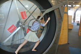 Hamster wheel2