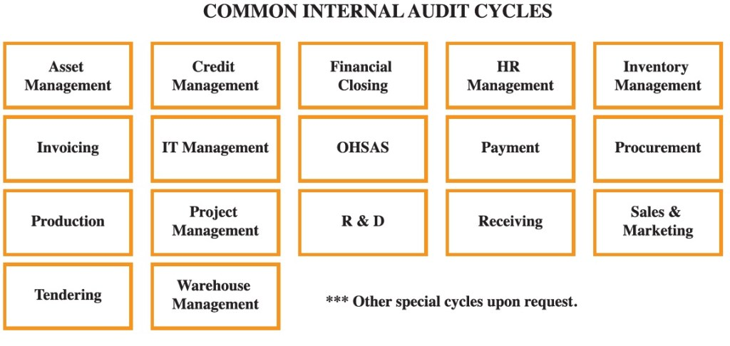 Common Internal Audit Cycles