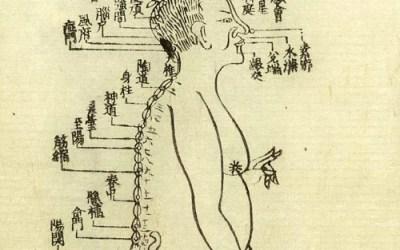 TUINÁ – a arte da massagem chinesa