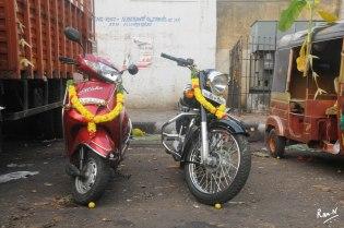 NRM_5638