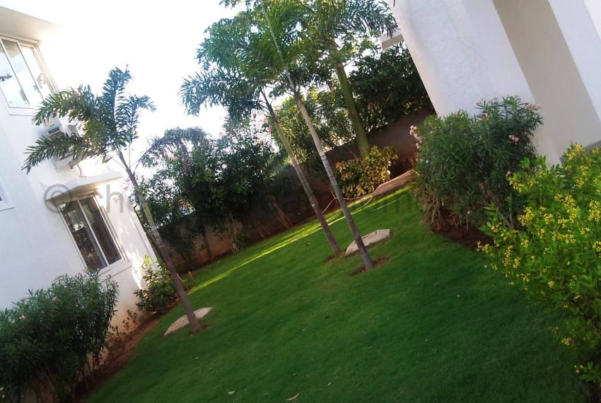 Landscaping (2)