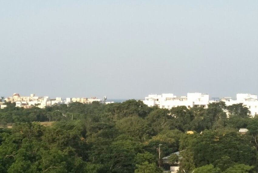 surrounding-green-view