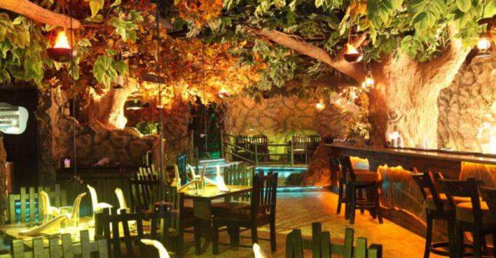 Rain Forest - Theme Restaurants in Chennai