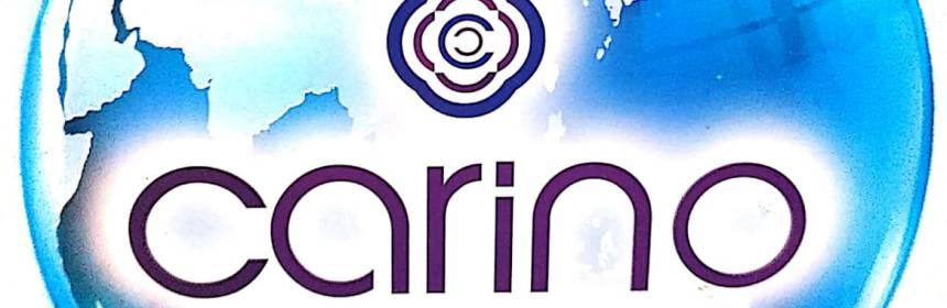 CARINO SHIRTING suppliers in Chennai