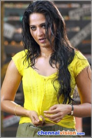 Tamil Actress Anushka Photos
