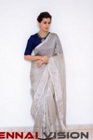 Actress Nikki Galrani Photos 2