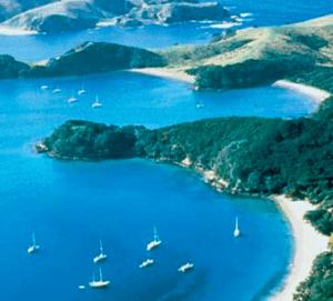 Viaggio di Nozze in Nuova Zelanda consigli su cosa