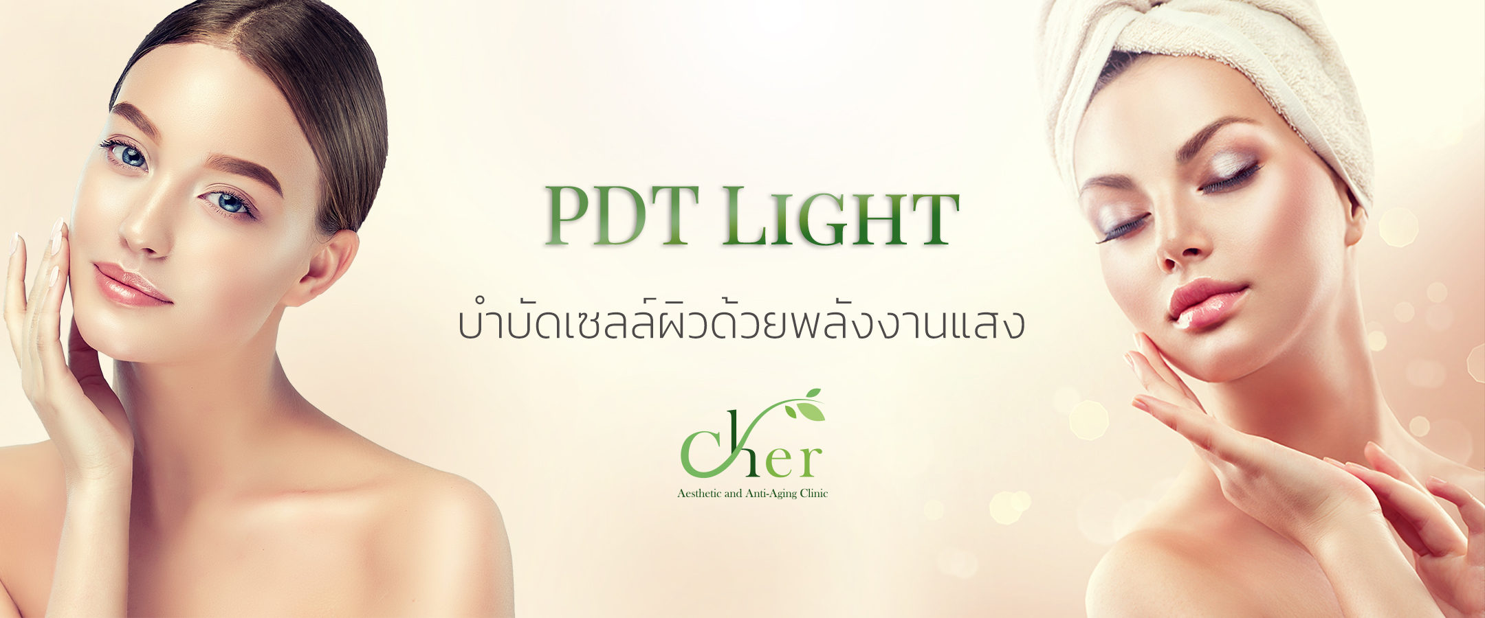 PDI light L.jpg