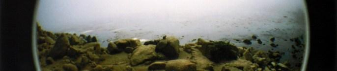 cropped-ocean-banner-bueno1.jpg