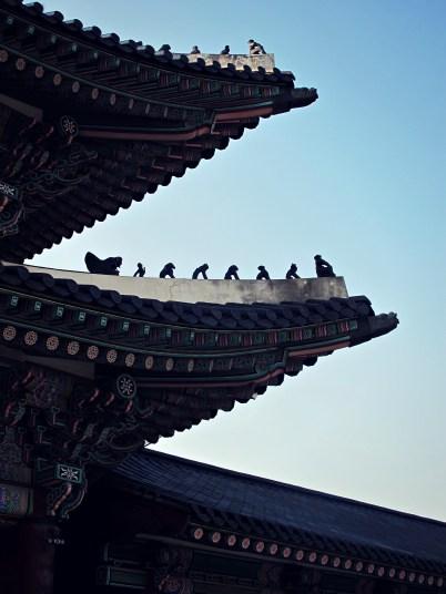 Gyeongbokgung Rooftops
